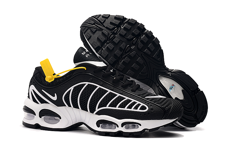 Men's Hot sale Running weapon Air Max TN 2019 Shoes 040